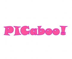 Kick-off meeting of PICaboo project