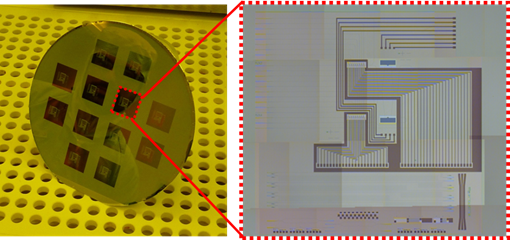 Figure 1-8: Picture and microscope image of the final wafer and chip showing the decoration of the wafer with a total of 12 dies (nanophotonic structures may only be present on several chips) and the final structures on the chip.